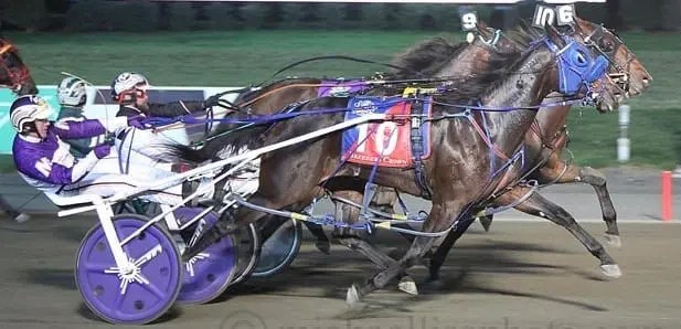 When Someomensomewhere won a four-horse win photo in the rookie pacing filly division it gave driver Marcus Miller his first Breeders Crown victory. | Michael Lisa