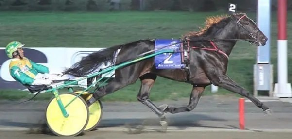 Walner (Tim Tetrick) was a dominant favorite in the freshman trotting colt division. | Michael Lisa
