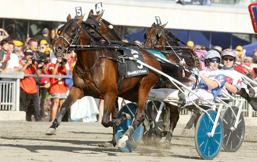 Trotting Triple Crown winner Marion Marauder (shown winning the Hambletonian with Scott Zeron driving) has been retired and will stand at Tara Hills Stud in Ontario. | Dave Landry