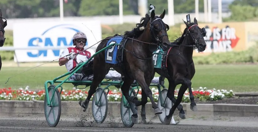 John Campbell (shown winning the 2010 Merrie Annabelle at the Meadowlands) has been a fixture at the East Rutherford, NJ track for 40 years and proudly remembers its heyday | Michael Lisa