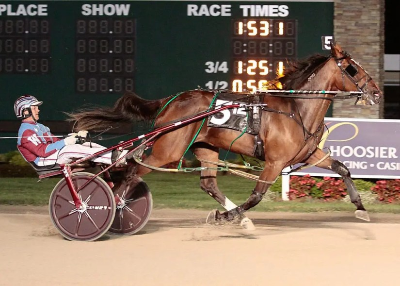 Undefeated Indiana-sired freshman pacing filly Dee Rocks and Sam Widger | Linscott Photography