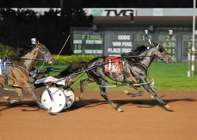 Fear The Dragon and David Miller winning the $500,000 Max Hempt Memorial Saturday in 1:49.3 | Curtis Salonick