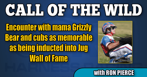 Encounter with mama Grizzly Bear and cubs as memorable as being inducted into Jug Wall of Fame