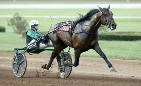Dave Landry With his shoes removed, Six Pack (Svanstedt) trotted to the fastest 3-year-old mile in harness racing history.