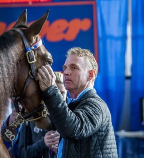 Triscari Video Web and Marketing | Retiring trainer Jimmy Takter sold three yearlings Monday, including $415,000 Krickan and $235,000 Love For Sail.