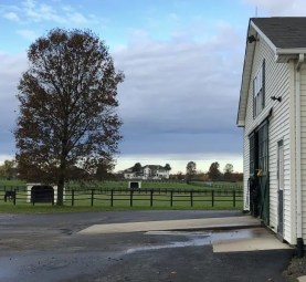 Dave Briggs | Jimmy and Christina's farm - with their home visible in the distance - will be the 2019 base for their daughter, Nancy Johansson and Jimmy's top assistant Per Engblom.