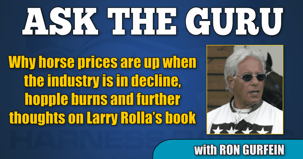 Why horse prices are up when the industry is in decline, hopple burns and further thoughts on Larry Rolla's book