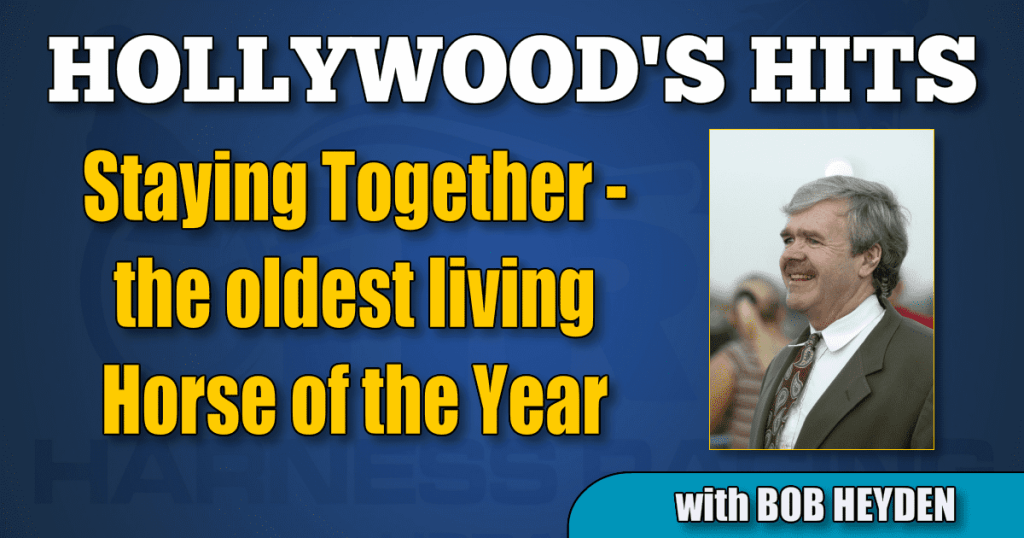 Staying Together - the oldest living Horse of the Year