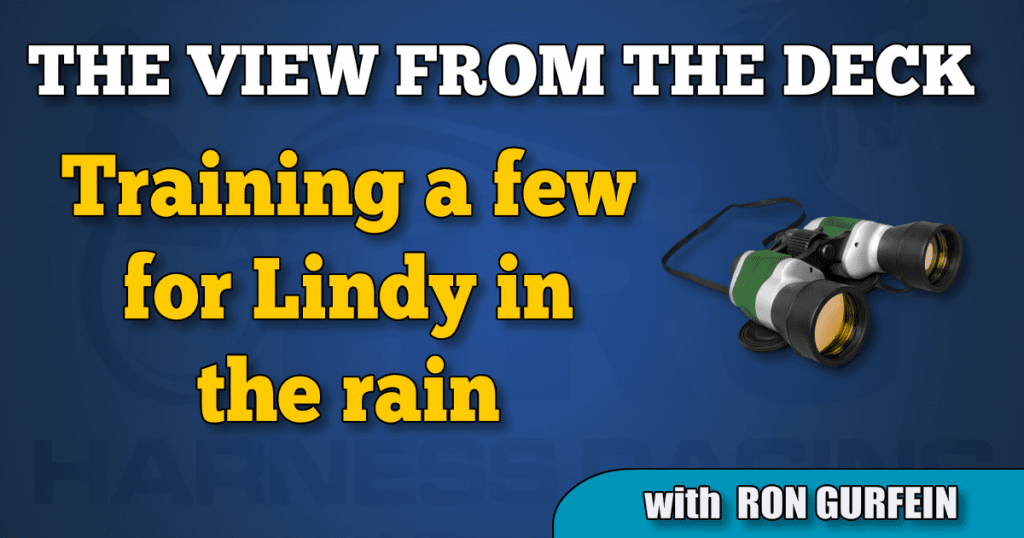 Training a few for Lindy in the rain