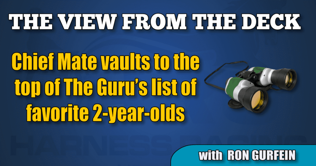 Chief Mate vaults to the top of The Guru's list of favorite 2-year-olds