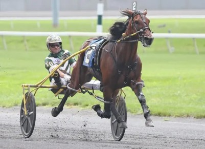 Claus Andersen | Youaremycandygirl (Yannick Gingras, winning at the Meadowlands on Hambletonian Day in 2018) is the latest of Donovan's stars, though his Irish friends are partial to filly named Reclamation who got her start in Ireland.