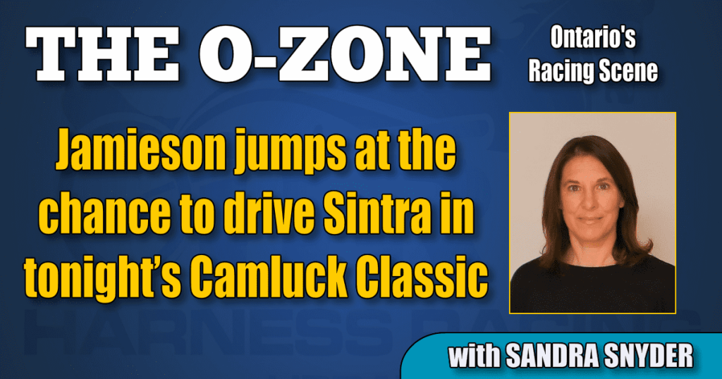 Jamieson jumps at the chance to drive Sintra in tonight's Camluck Classic