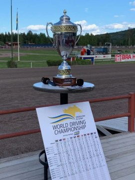 Dave Briggs | The World Driving Championship trophy will be handed out today in Sweden.
