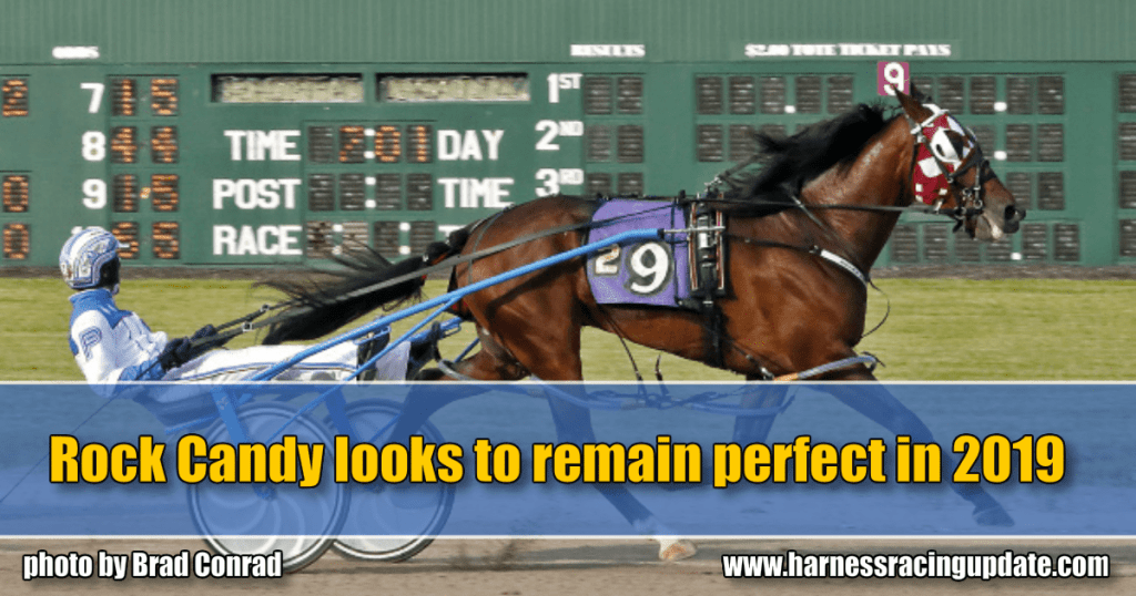 Rock Candy looks to remain perfect in 2019