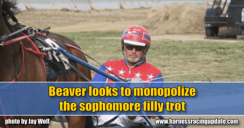 Beaver looks to monopolize the sophomore filly trot