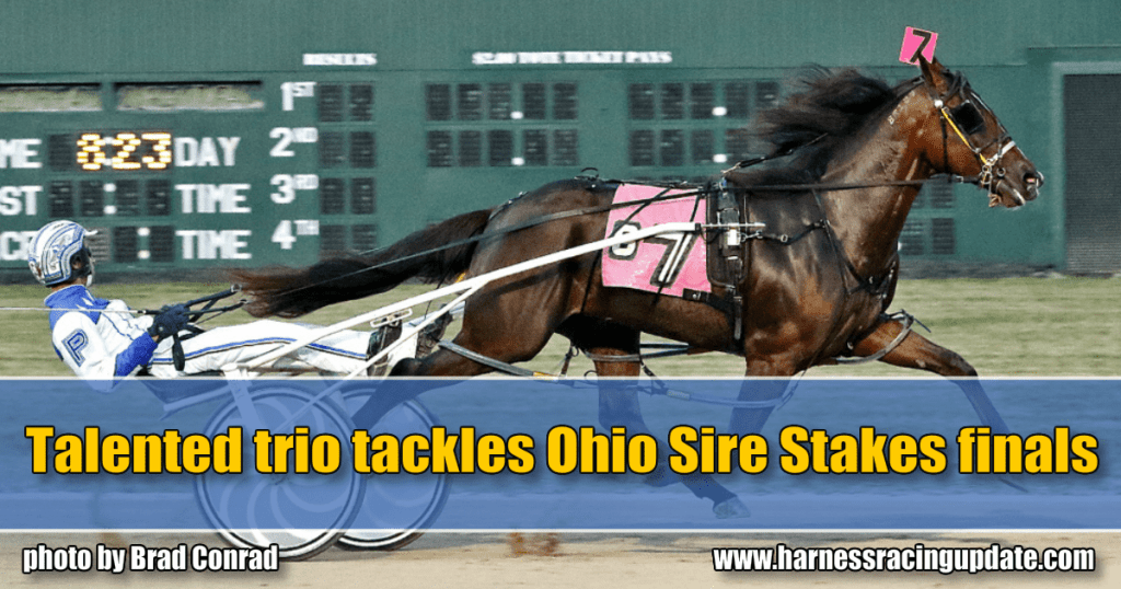 Talented trio tackles Ohio Sire Stakes finals