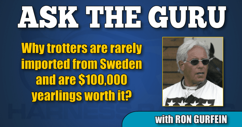Why trotters are rarely imported from Sweden and are $100,000 yearlings worth it?