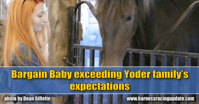 Bargain Baby exceeding Yoder family's expectations