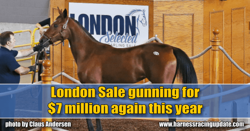 London Sale gunning for $7 million again this year