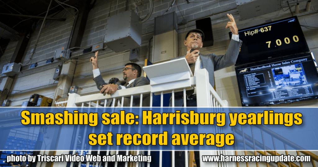 Smashing sale: Harrisburg yearlings set record average