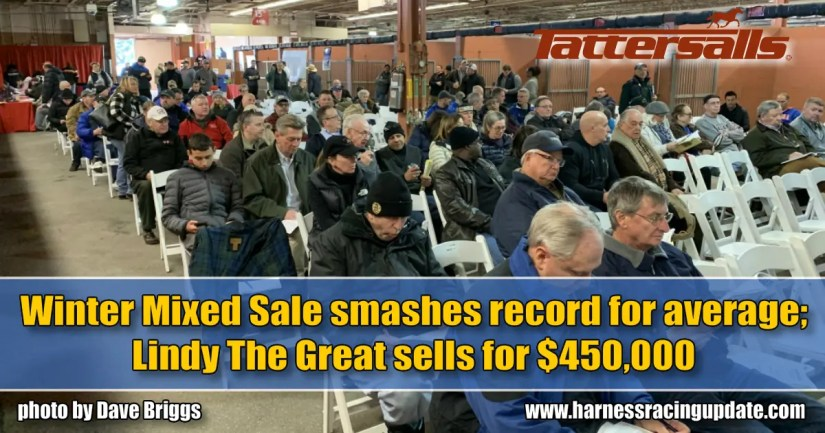 Winter Mixed Sale smashes record for average; Lindy The Great sells for $450,000