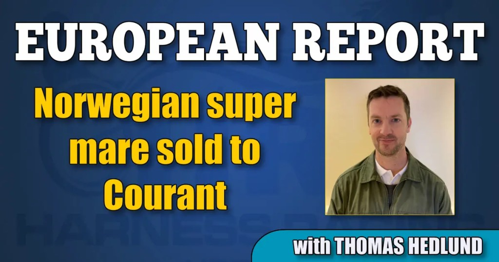 Norwegian super mare sold to Courant