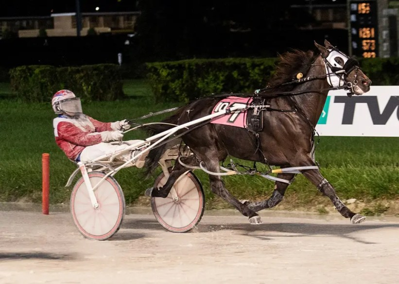 Four Footed Fotos | Fox Valley Triton returns to action for the father-son team of trainer Terry Leonard and driver Casey Leonard at Hawthorne.