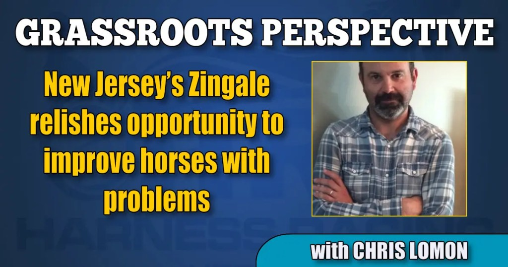 New Jersey's Zingale relishes opportunity to improve horses with problems