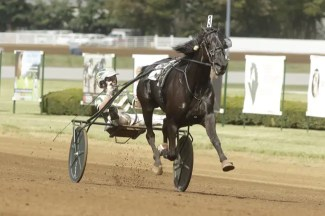 #2 Hannelore Hanover | photo by Dave Landry