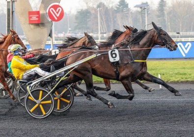 Mia Törnberg/Sulkysport | Earl Simon drew the eight hole in his heat, but is still one of the favorites to win the 2020 Elitloppet.