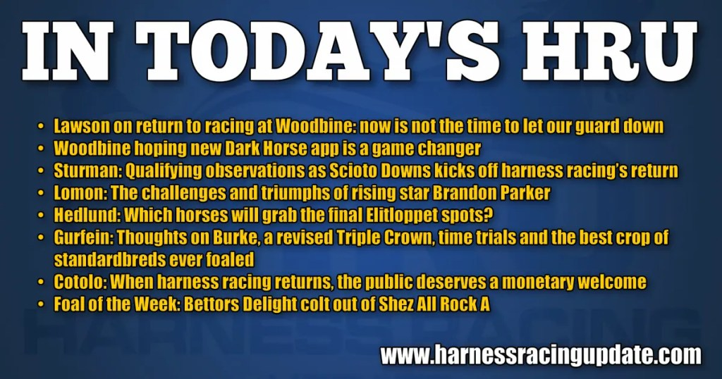 Woodbine hoping new Dark Horse app is a game changer