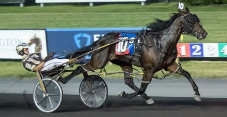 Michael Lisa | Splash Brother (Tyler Buter) won his Meadowlands race Saturday in 1:48.2.