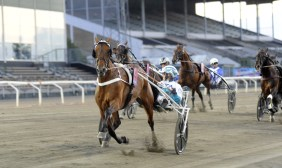Jörgen Tufvesson/ALN | Double Exposure (Örjan Kihlström) defeated the boys in the $350,000 Hugo Åbergs Memorial Tuesday night (July 28) with a 1:51.2 mile.