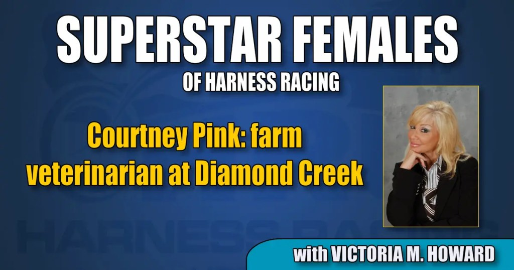 Courtney Pink – farm veterinarian at Diamond Creek