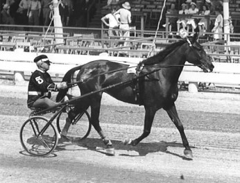 Courtesy Hambletonian Society   The author's grandfather was charging $5 per month to park in his garage by 1936, the year the legendary filly Rosalind won the Hambletonian for the father-son team of Ben and Gib White.