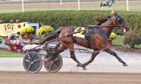 Brad Conrad | Captain Barbossa (Joe Bongiorno) won the Jug final in 1:49.1, which was one-fifth of a second off the stakes and world record for a 3-year-old pacer on a half-mile track.