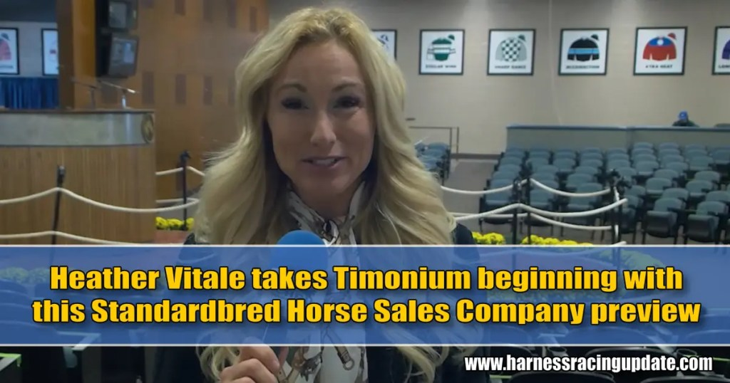 Heather Vitale takes Timonium beginning with this Standardbred Horse Sales Company preview