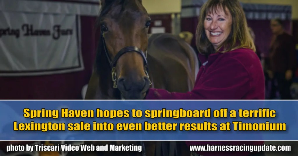Spring Haven hopes to springboard off a terrific Lexington sale into even better results at Timonium