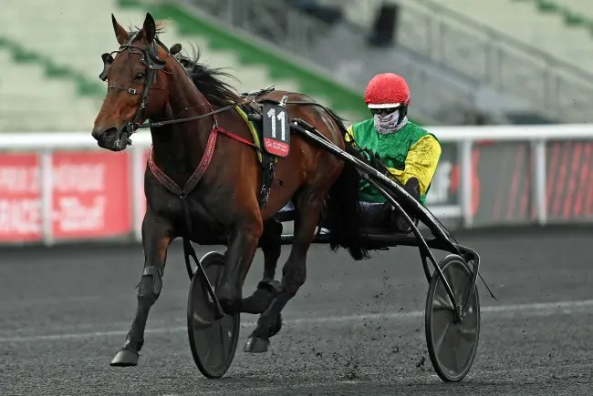 Gerard Forni | Davidson du Pont (Jean-Michel Bazire) won the $135,000 Prix de Belgique on Sunday (Jan. 17) at Vincennes in Paris in a mile rate of 1:55.4 that was a stakes record.