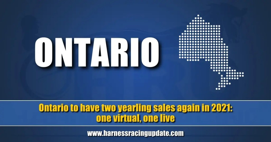 Ontario to have two yearling sales again in 2021 — one virtual, one live