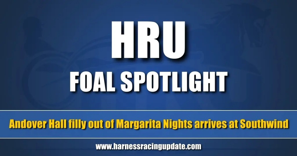Andover Hall filly out of Margarita Nights arrives at Southwind