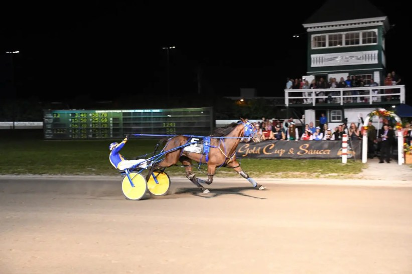Gail MacDonald | Smooth Lou (Robert Shepherd) winning the 62nd Guardian Gold Cup and Saucer in 1: 51.1 just after midnight Saturday (August 21) at Red Shores Charlottetown.
