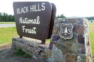 Black Hills Parks