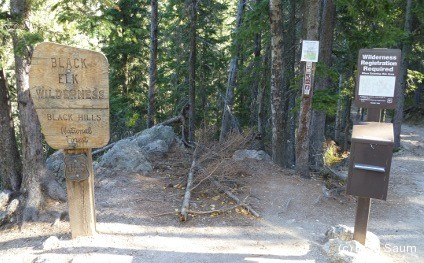 Trail to Harney Peak