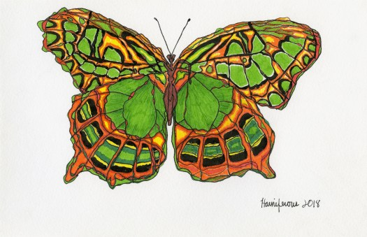 Meditative / Contemplative Drawing of green butterfly on 6X8 card using Staedler pens and Fineliner markers