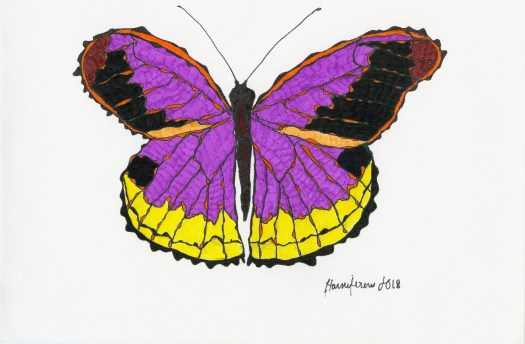 Meditative / Contemplative Drawing of purple butterfly on 6X8 card using Staedler pens and Fineliner markers
