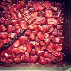 fraises et rhubarbe 2