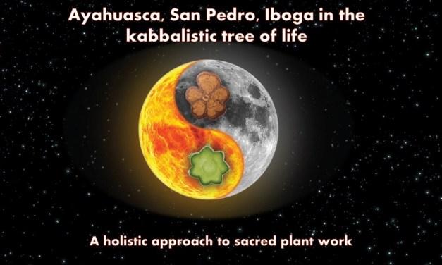 Ayahuasca, Iboga, San Pedro and the Kabbalistic Tree of Life