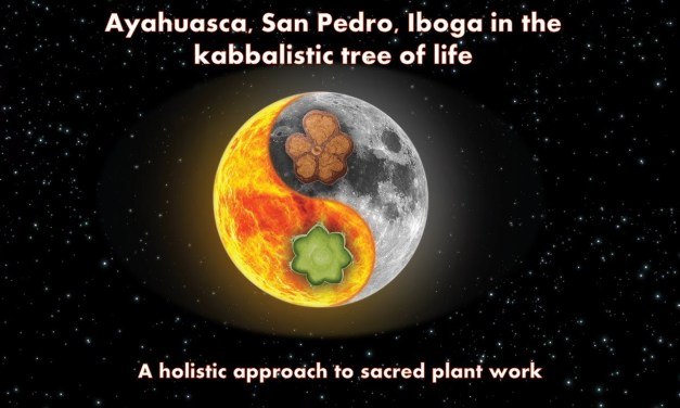 Ayahuasca, Iboga, San Pedro and the Kabbalistic Tree of Life