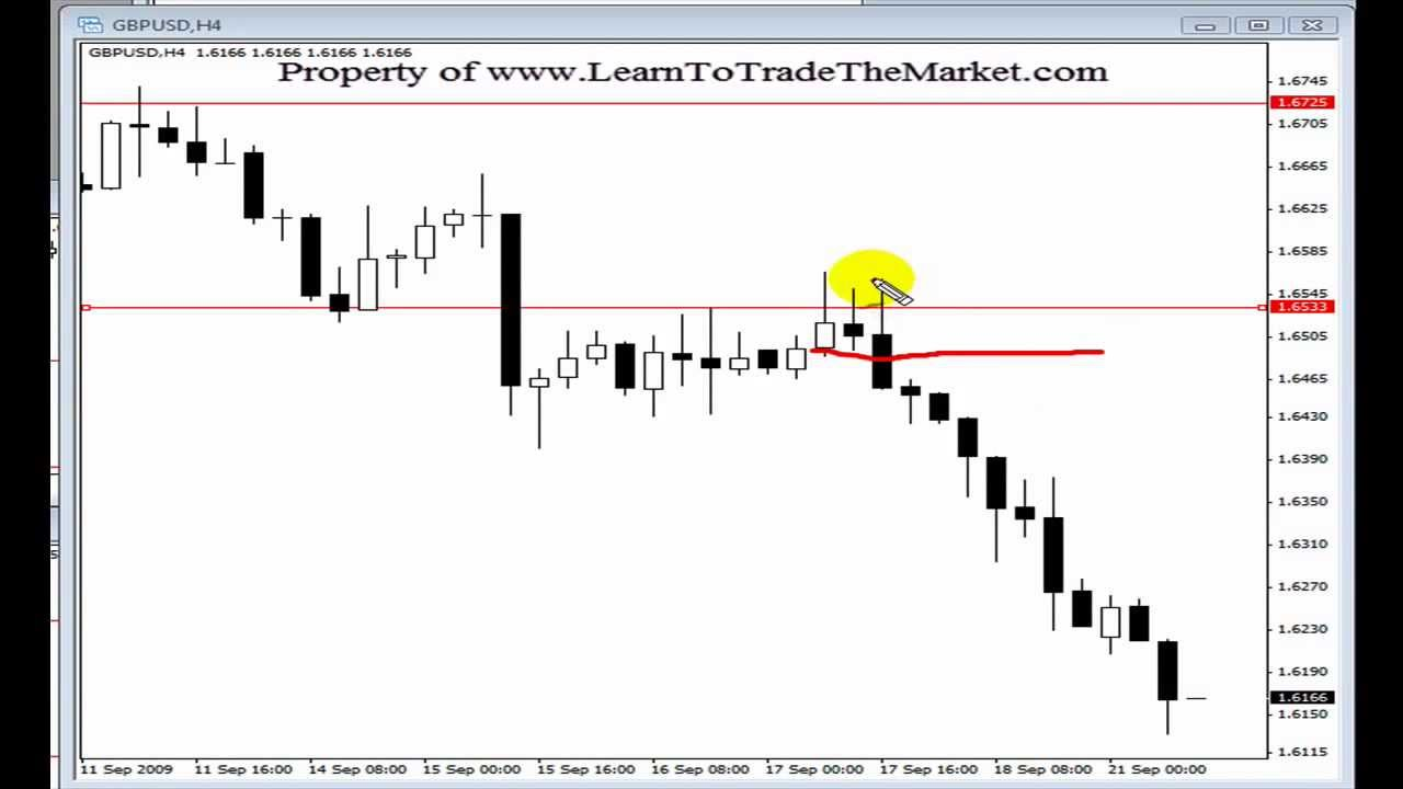 Mt cook forex